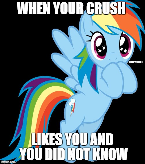 When your crush likes you | WHEN YOUR CRUSH LIKES YOU AND YOU DID NOT KNOW HOLY SHIT | image tagged in mlp,life,i'm a fucking lesbian,i'm a fucking gay,i'm a fucking straight,someone kill me | made w/ Imgflip meme maker