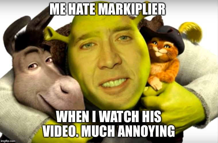 Shrek is the best  | ME HATE MARKIPLIER WHEN I WATCH HIS VIDEO. MUCH ANNOYING | image tagged in shrek is the best | made w/ Imgflip meme maker