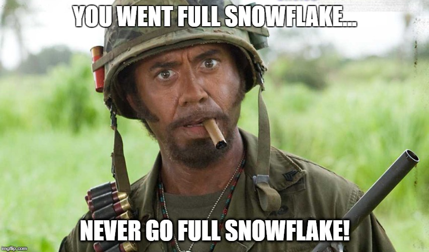 YOU WENT FULL SNOWFLAKE... NEVER GO FULL SNOWFLAKE! | image tagged in snowflake,funny,robert downey jr | made w/ Imgflip meme maker