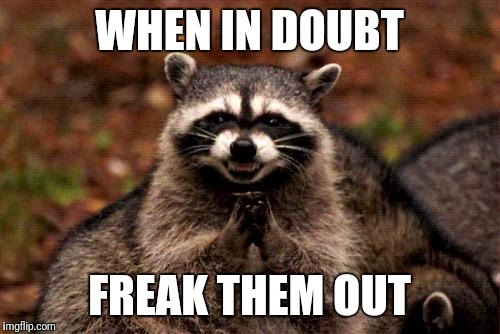 Evil Plotting Raccoon Meme | WHEN IN DOUBT FREAK THEM OUT | image tagged in memes,evil plotting raccoon | made w/ Imgflip meme maker