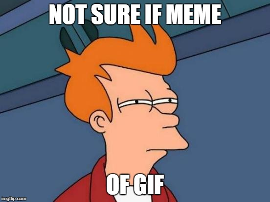 Futurama Fry Meme | NOT SURE IF MEME OF GIF | image tagged in memes,futurama fry | made w/ Imgflip meme maker
