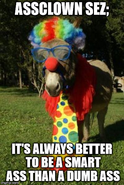 Ass clown | ASSCLOWN SEZ; IT'S ALWAYS BETTER TO BE A SMART ASS THAN A DUMB ASS | image tagged in ass clown | made w/ Imgflip meme maker