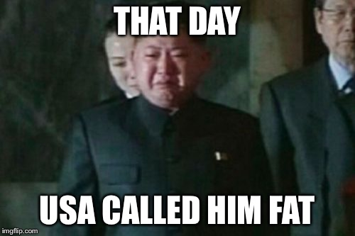 Kim Jong Un Sad Meme | THAT DAY USA CALLED HIM FAT | image tagged in memes,kim jong un sad | made w/ Imgflip meme maker
