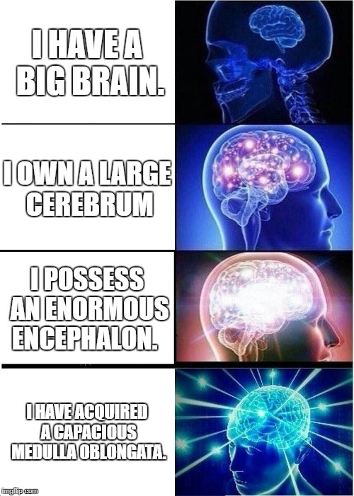Increasingly Verbose Brain | I HAVE A BIG BRAIN. I OWN A LARGE CEREBRUM I POSSESS AN ENORMOUS ENCEPHALON. I HAVE ACQUIRED A CAPACIOUS MEDULLA OBLONGATA. | image tagged in memes,expanding brain | made w/ Imgflip meme maker