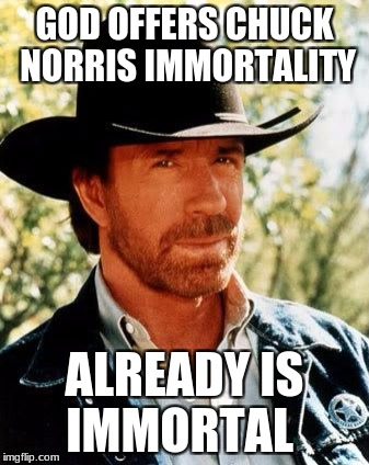 Chuck Norris Meme | GOD OFFERS CHUCK NORRIS IMMORTALITY ALREADY IS IMMORTAL | image tagged in memes,chuck norris | made w/ Imgflip meme maker