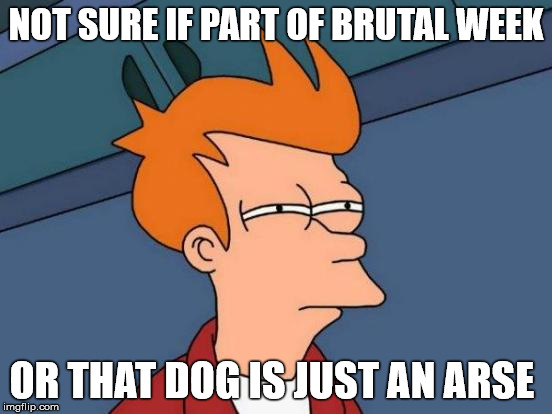 Futurama Fry Meme | NOT SURE IF PART OF BRUTAL WEEK OR THAT DOG IS JUST AN ARSE | image tagged in memes,futurama fry | made w/ Imgflip meme maker