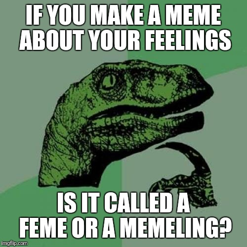 Your Feelings On The Matter | IF YOU MAKE A MEME ABOUT YOUR FEELINGS IS IT CALLED A FEME OR A MEMELING? | image tagged in memes,philosoraptor,discussion,made a feme,made a memeling,made a mistake | made w/ Imgflip meme maker