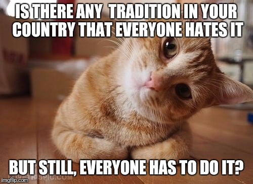 Curious Question Cat | IS THERE ANY  TRADITION IN YOUR COUNTRY THAT EVERYONE HATES IT BUT STILL, EVERYONE HAS TO DO IT? | image tagged in curious question cat | made w/ Imgflip meme maker
