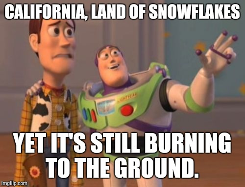 X, X Everywhere Meme | CALIFORNIA, LAND OF SNOWFLAKES YET IT'S STILL BURNING TO THE GROUND. | image tagged in memes,futurama fry,funny memes,the most interesting man in the world,bad luck brian,x x everywhere | made w/ Imgflip meme maker