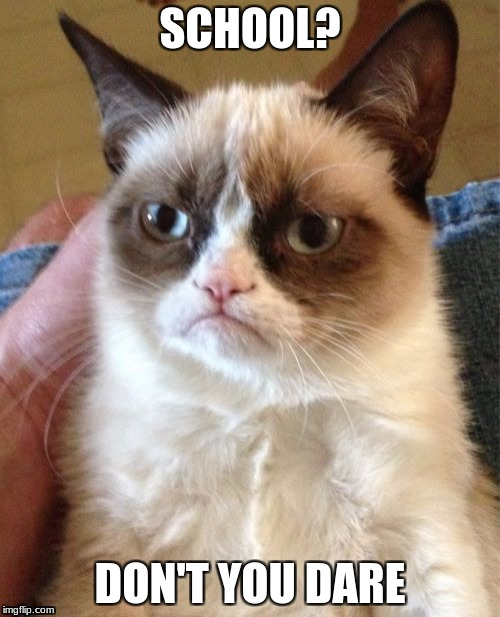 Grumpy Cat Meme | SCHOOL? DON'T YOU DARE | image tagged in memes,grumpy cat | made w/ Imgflip meme maker