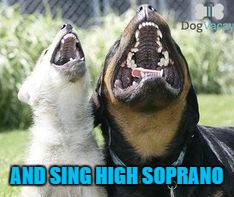 AND SING HIGH SOPRANO | made w/ Imgflip meme maker