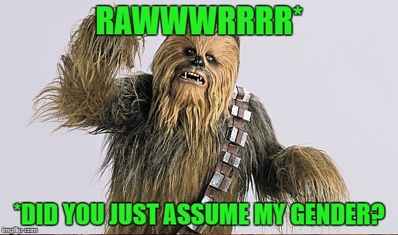 RAWWWRRRR* *DID YOU JUST ASSUME MY GENDER? | made w/ Imgflip meme maker