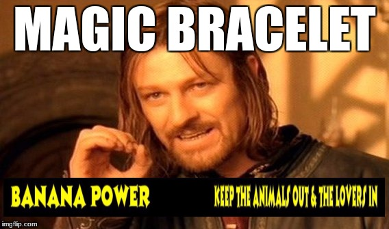 One Does Not Simply Meme | MAGIC BRACELET | image tagged in memes,one does not simply | made w/ Imgflip meme maker