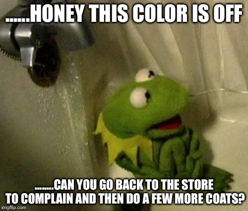 ......HONEY THIS COLOR IS OFF ........CAN YOU GO BACK TO THE STORE TO COMPLAIN AND THEN DO A FEW MORE COATS? | made w/ Imgflip meme maker