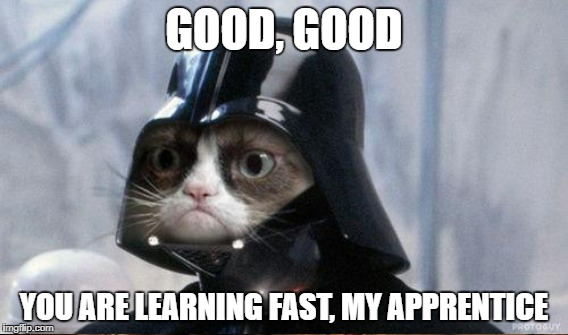 GOOD, GOOD YOU ARE LEARNING FAST, MY APPRENTICE | made w/ Imgflip meme maker