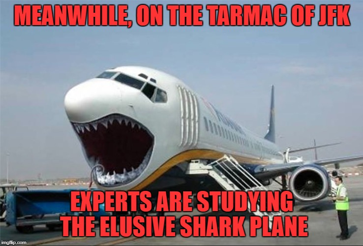 MEANWHILE, ON THE TARMAC OF JFK EXPERTS ARE STUDYING THE ELUSIVE SHARK PLANE | image tagged in shark plane | made w/ Imgflip meme maker