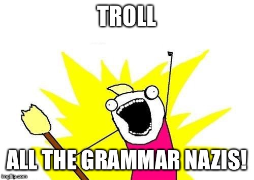 X All The Y Meme | TROLL ALL THE GRAMMAR NAZIS! | image tagged in memes,x all the y | made w/ Imgflip meme maker