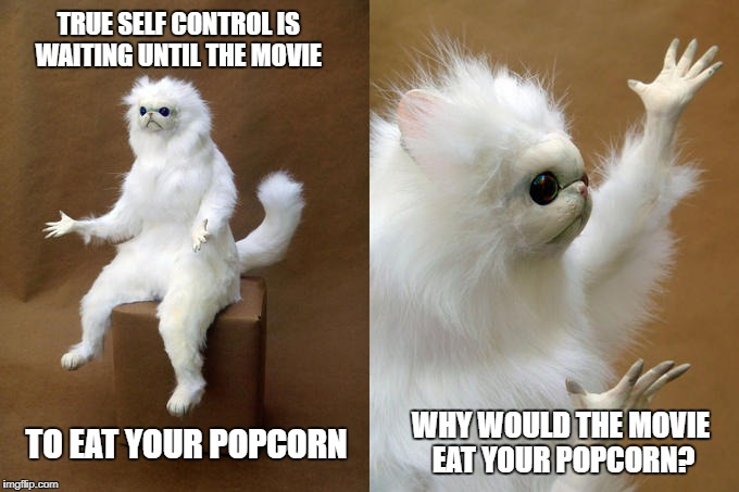 I have no self control when it comes to movie popcorn. I'm definitely not waiting for the movie to eat it.  | TRUE SELF CONTROL IS WAITING UNTIL THE MOVIE WHY WOULD THE MOVIE EAT YOUR POPCORN? TO EAT YOUR POPCORN | image tagged in memes,persian cat room guardian | made w/ Imgflip meme maker