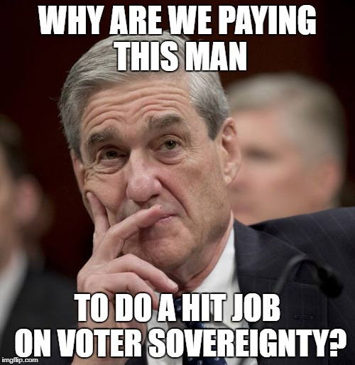 WHY ARE WE PAYING THIS MAN TO DO A HIT JOB ON VOTER SOVEREIGNTY? | image tagged in special council robert mueller | made w/ Imgflip meme maker