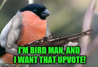 I'M BIRD MAN, AND I WANT THAT UPVOTE! | made w/ Imgflip meme maker