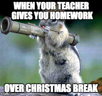 no, not homework! | WHEN YOUR TEACHER GIVES YOU HOMEWORK OVER CHRISTMAS BREAK | image tagged in memes,bazooka squirrel | made w/ Imgflip meme maker