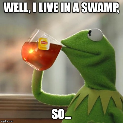 But Thats None Of My Business Meme | WELL, I LIVE IN A SWAMP, SO... | image tagged in memes,but thats none of my business,kermit the frog | made w/ Imgflip meme maker