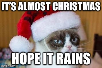 Christmas Grumpy Cat | IT'S ALMOST CHRISTMAS HOPE IT RAINS | image tagged in christmas grumpy cat | made w/ Imgflip meme maker