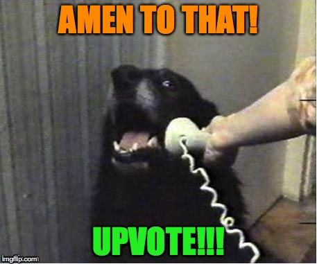 doggo on phone | AMEN TO THAT! UPVOTE!!! | image tagged in doggo on phone | made w/ Imgflip meme maker
