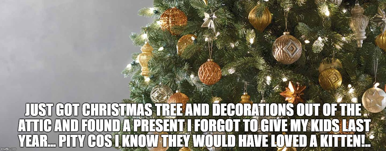 JUST GOT CHRISTMAS TREE AND DECORATIONS OUT OF THE ATTIC AND FOUND A PRESENT I FORGOT TO GIVE MY KIDS LAST YEAR... PITY COS I KNOW THEY WOUL | image tagged in merry christmas | made w/ Imgflip meme maker