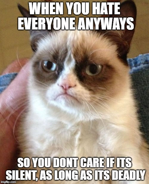 Grumpy Cat Meme | WHEN YOU HATE EVERYONE ANYWAYS SO YOU DONT CARE IF ITS SILENT, AS LONG AS ITS DEADLY | image tagged in memes,grumpy cat | made w/ Imgflip meme maker