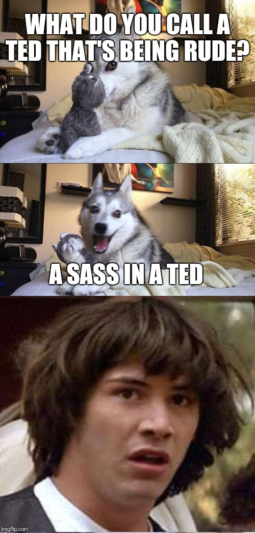 Inspired by Raydog whom was inspired by Lynch1979 | WHAT DO YOU CALL A TED THAT'S BEING RUDE? A SASS IN A TED | image tagged in memes,bad pun dog,conspiracy keanu | made w/ Imgflip meme maker