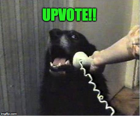 doggo on phone | UPVOTE!! | image tagged in doggo on phone | made w/ Imgflip meme maker