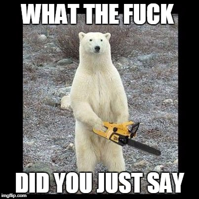 Chainsaw Bear Meme | WHAT THE F**K DID YOU JUST SAY | image tagged in memes,chainsaw bear | made w/ Imgflip meme maker