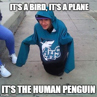 Super Dank Memes | IT'S A BIRD, IT'S A PLANE IT'S THE HUMAN PENGUIN | image tagged in penguin,dank memes,memes | made w/ Imgflip meme maker