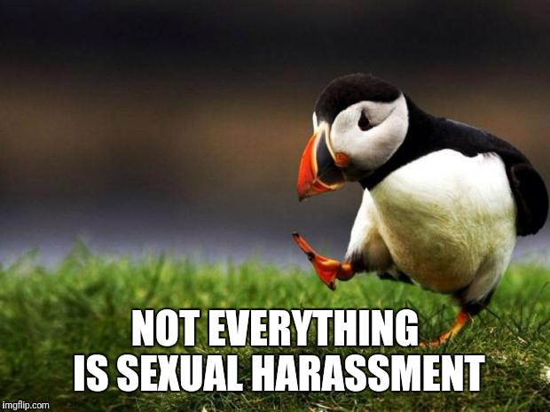 Unpopular Opinion Puffin Meme | NOT EVERYTHING IS SEXUAL HARASSMENT | image tagged in memes,unpopular opinion puffin | made w/ Imgflip meme maker