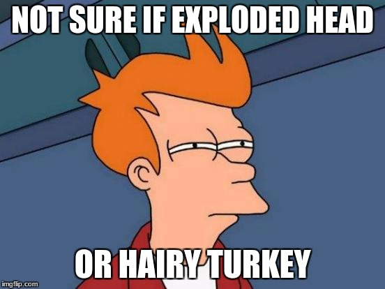 Futurama Fry Meme | NOT SURE IF EXPLODED HEAD OR HAIRY TURKEY | image tagged in memes,futurama fry | made w/ Imgflip meme maker