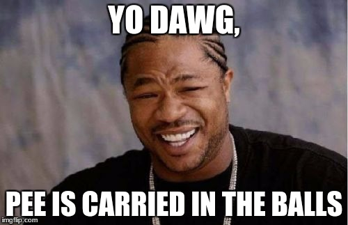 Ass Crust | YO DAWG, PEE IS CARRIED IN THE BALLS | image tagged in memes,yo dawg heard you | made w/ Imgflip meme maker