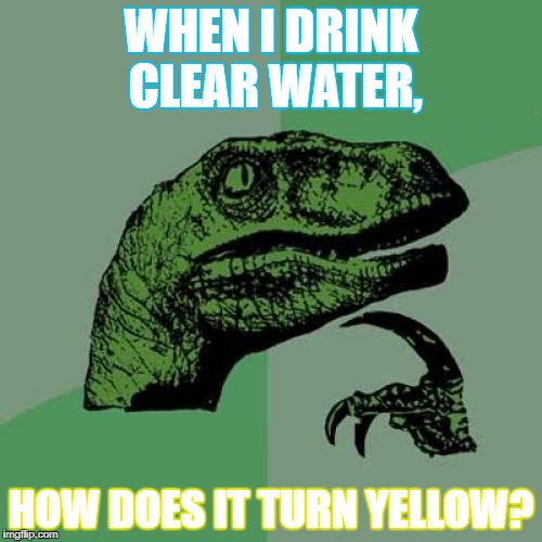 Peeved Off | WHEN I DRINK CLEAR WATER, HOW DOES IT TURN YELLOW? | image tagged in memes,philosoraptor,pee | made w/ Imgflip meme maker