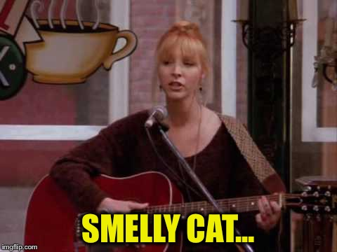 SMELLY CAT... | made w/ Imgflip meme maker
