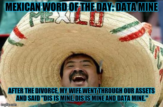 "mexican word of the day | MEXICAN WORD OF THE DAY: DATA MINE AFTER THE DIVORCE, MY WIFE WENT THROUGH OUR ASSETS AND SAID ""DIS IS MINE, DIS IS MINE AND DATA MINE."" 