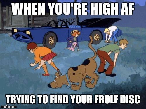 Frolf life | WHEN YOU'RE HIGH AF TRYING TO FIND YOUR FROLF DISC | image tagged in scooby doo search | made w/ Imgflip meme maker