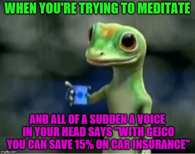 "Geico Gecko | WHEN YOU'RE TRYING TO MEDITATE AND ALL OF A SUDDEN A VOICE IN YOUR HEAD SAYS ""WITH GEICO YOU CAN SAVE 15% ON CAR INSURANCE"" 