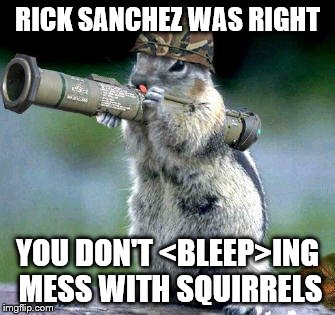 Bazooka Squirrel | RICK SANCHEZ WAS RIGHT YOU DON'T <BLEEP>ING MESS WITH SQUIRRELS | image tagged in memes,bazooka squirrel | made w/ Imgflip meme maker