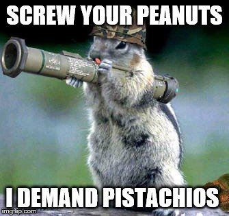 Bazooka Squirrel | SCREW YOUR PEANUTS I DEMAND PISTACHIOS | image tagged in memes,bazooka squirrel | made w/ Imgflip meme maker