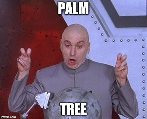Dr Evil Laser Meme | PALM TREE | image tagged in memes,dr evil laser | made w/ Imgflip meme maker