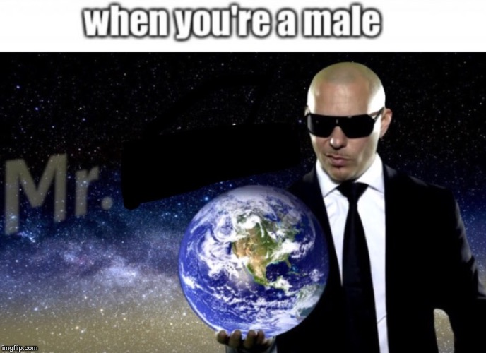 image tagged in mr worldwide,memes,funny,pitbull,dank,dank memes | made w/ Imgflip meme maker
