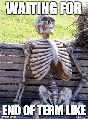 Waiting Skeleton Meme | WAITING FOR END OF TERM LIKE | image tagged in memes,waiting skeleton | made w/ Imgflip meme maker