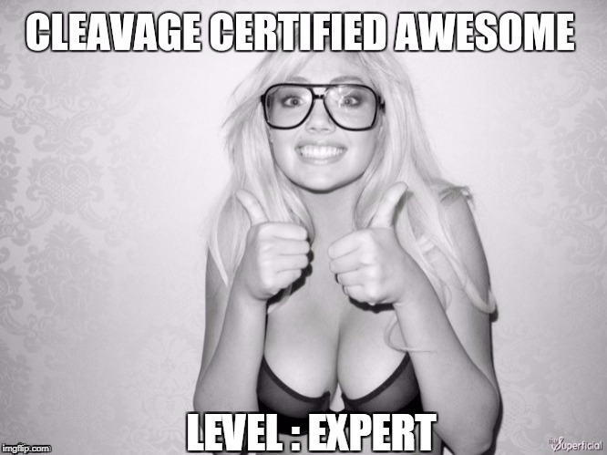 LEVEL : EXPERT | image tagged in cleavage week | made w/ Imgflip meme maker