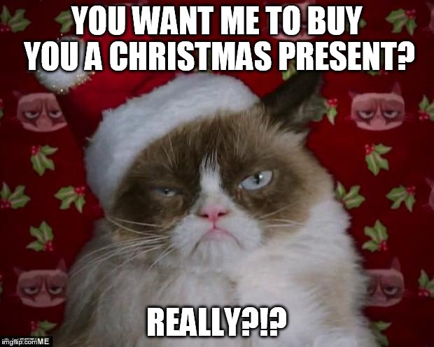 Grumpy Cat Christmas | YOU WANT ME TO BUY YOU A CHRISTMAS PRESENT? REALLY?!? | image tagged in grumpy cat christmas | made w/ Imgflip meme maker