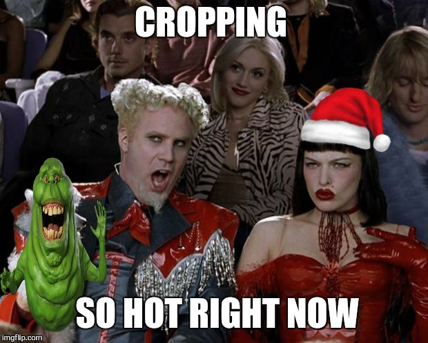 Mugatu So Hot Right Now Meme | CROPPING SO HOT RIGHT NOW | image tagged in memes,mugatu so hot right now | made w/ Imgflip meme maker